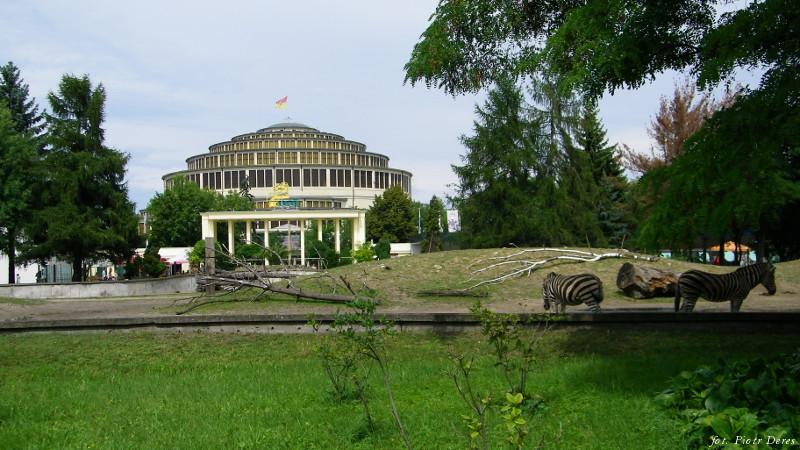 Hala Stulecia widziana z wrocławskiego zoo